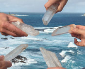 Lemurian Seed Crystals